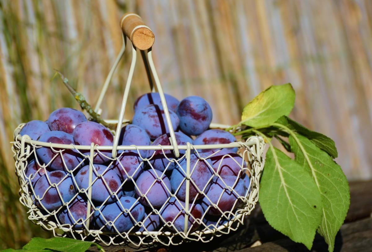 purple foods fantastic for health